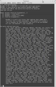 Screenshot-Terminal-2